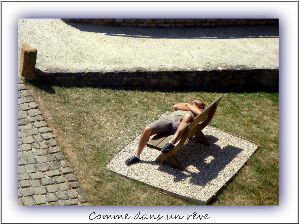 VITRINE JANVIER 2013 Comme_10